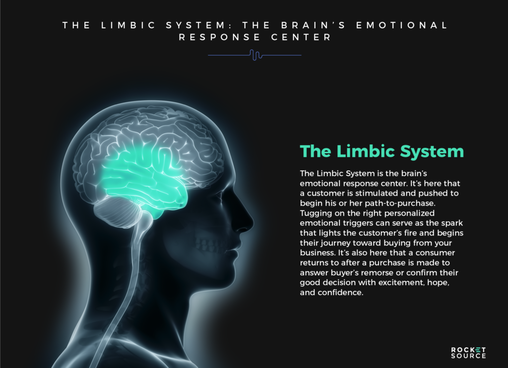 buyer cognition the limbic system