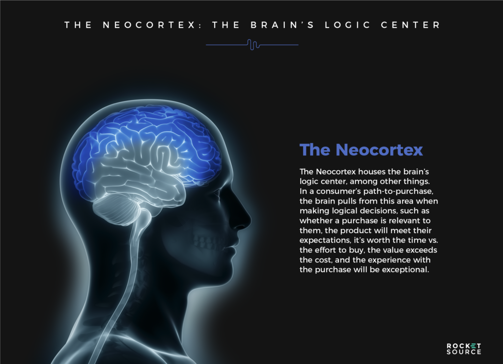 customer cognition the neocortex