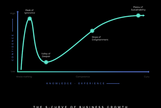 Revenue Acceleration and the S curve of growth